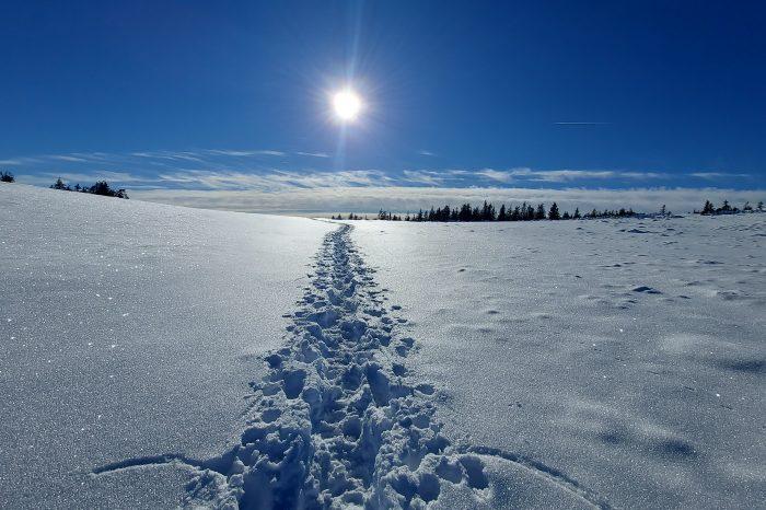 Voyage d'hiver en Transylvanie